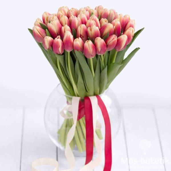 51 тюльпанов в ленте