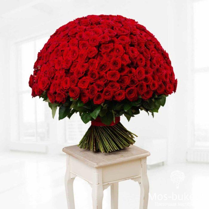 301 роз красивыми красными розами купить недорого в Москве!