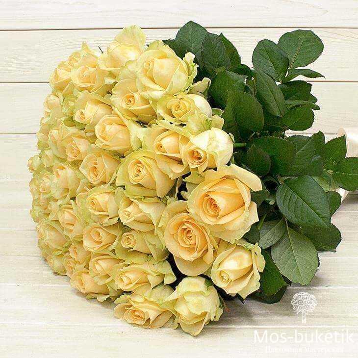 Букет из 31 кремовых роз