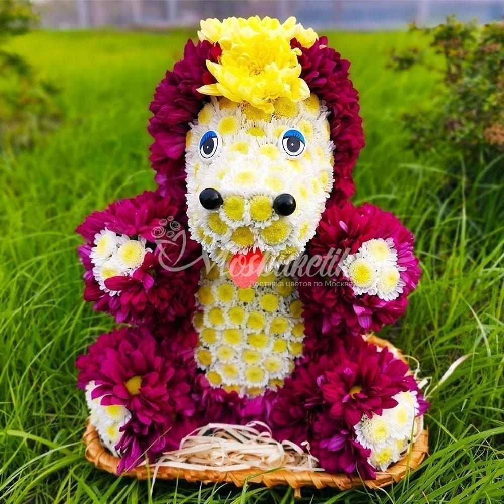 Единорог из живых цветов