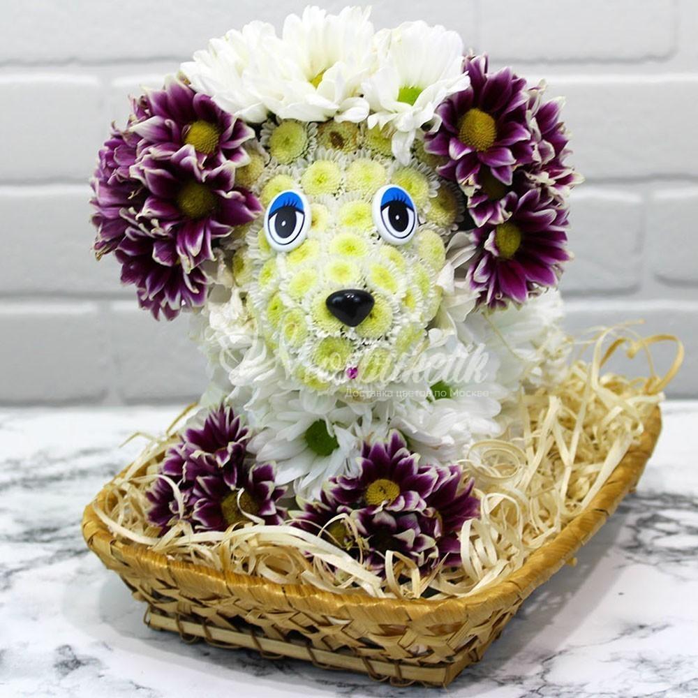Собачка из живых цветов