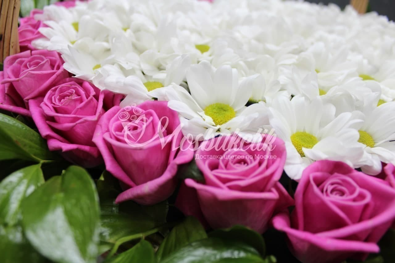 ф29 роз с хризантемами в виде сердце