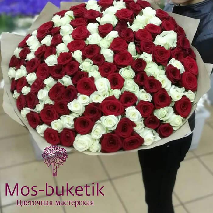 101 микс роза недорого