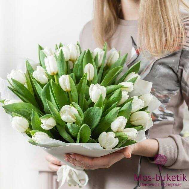Букет из белых тюльпанов (51 шт)