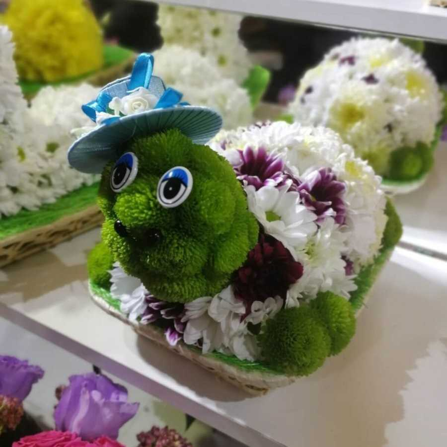 Игрушки из живых цветов «черепашка»