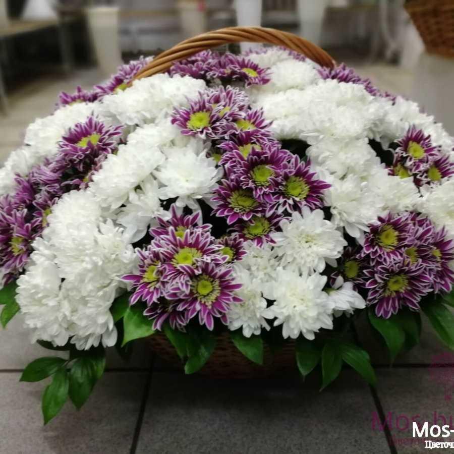 31 кустовая хризантема в корзине