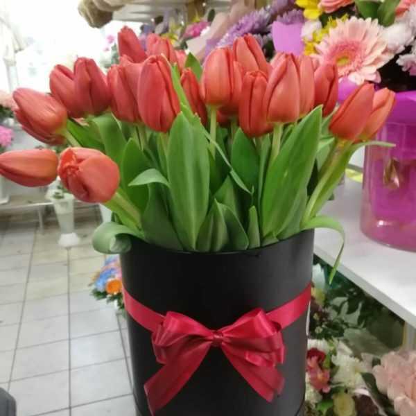 51 тюльпанов в коробке