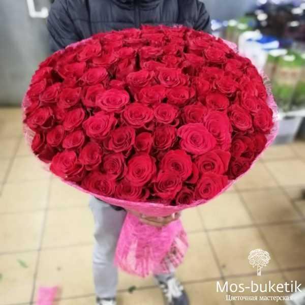 Букет из 51 эквадорских роз (80 см)