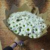 Букет из 15 кустовых хризантем 11708