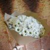 Букет из 15 кустовых хризантем 11709