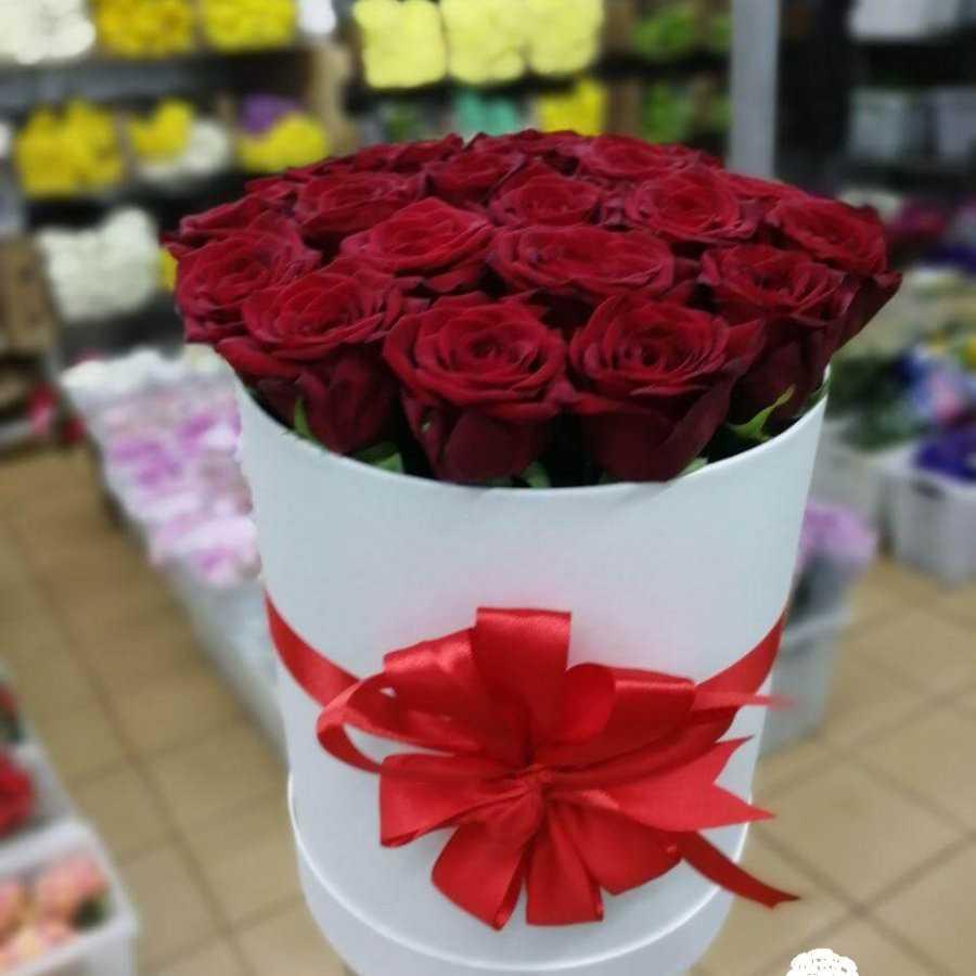 19 роза в шляпной коробке