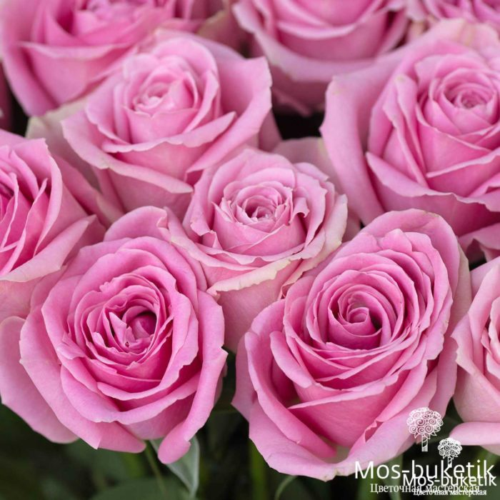 Букет из 51 Роза 8036