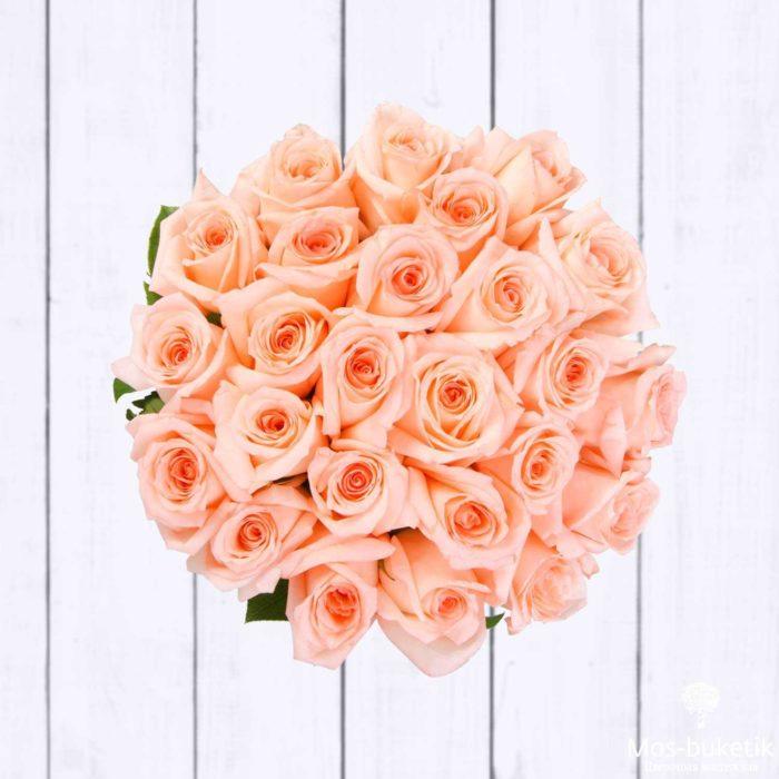 25 эквадорская роза 8031