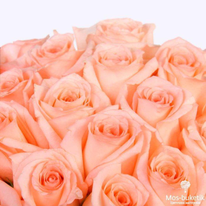 25 эквадорская роза 8032