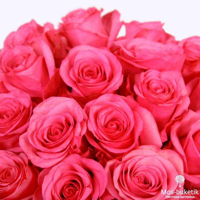 25 эквадорская роза 8027
