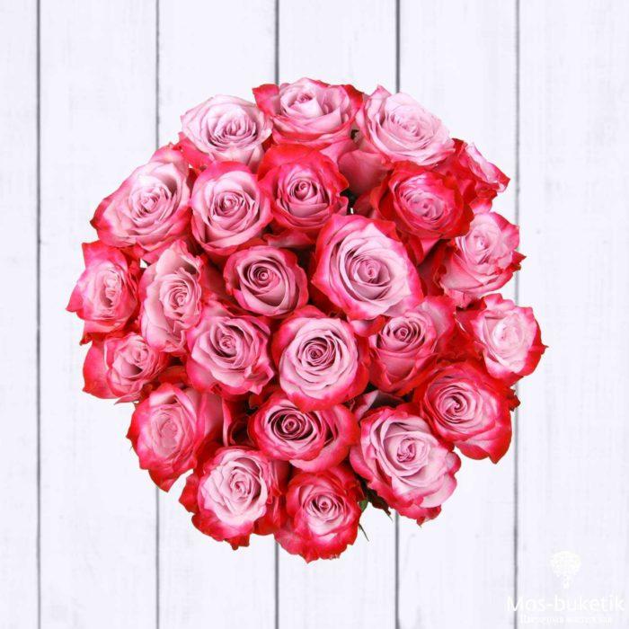 25 эквадорская роза 8021