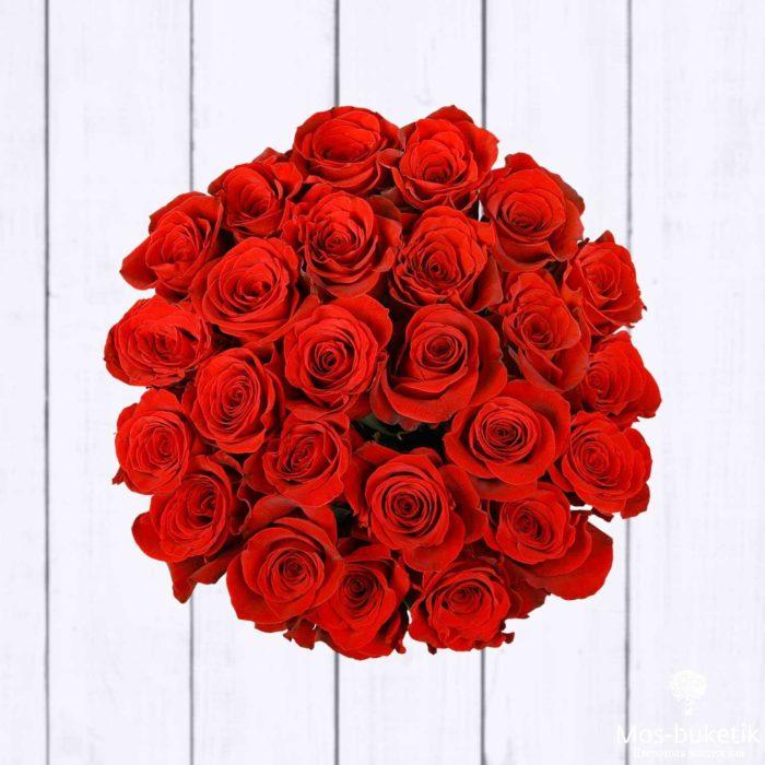 25 эквадорская роза 8015