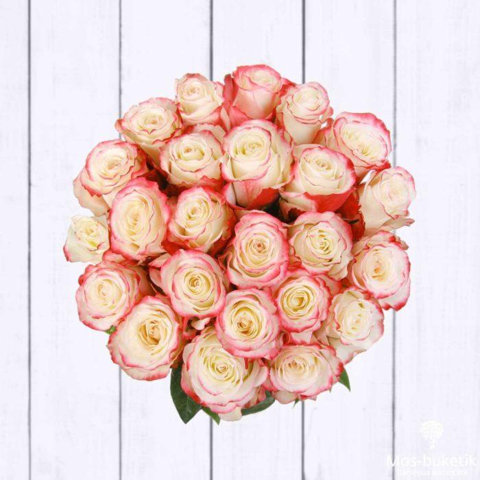 25 эквадорская роза 8011